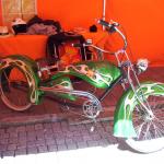 12 Fitness Bike für Grüne Fans RGR
