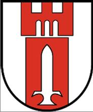 Wappen Logo Hochfilzen RGR
